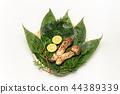 Matsutake mushroom / Matsutake 44389339