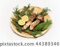 Matsutake mushroom / Matsutake 44389346