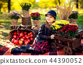 Smiling child with basket of red apples sitting in autumn park 44390052