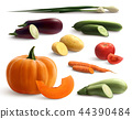 Cutted Vegetables Realistic Set 44390484