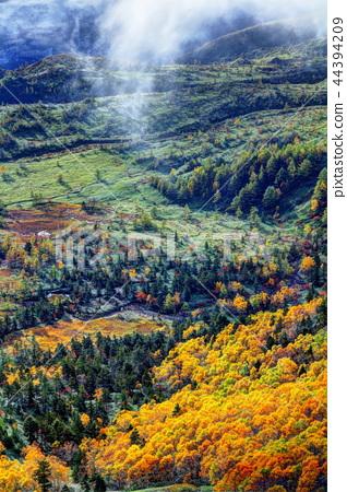 芳ヶ平 초원의 가을 44394209