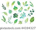 잎 그린 수채화 44394327