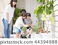 원예, 정원 가꾸기, 가드닝 44394988