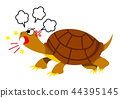 snapping, turtle, reptile 44395145