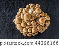 可口蘑菇盛肉盤可口蘑菇盛肉盤 44396166