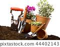 Gardening concept. 44402143