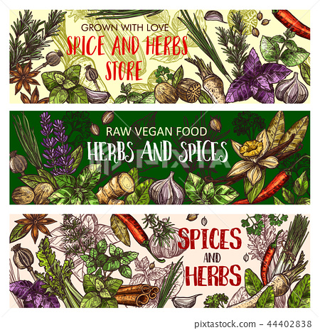 Vegan herbs and organic seasoning spices 44402838