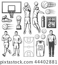Basketball game players and equipment, vector 44402881