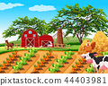 A rural farm landscape 44403981
