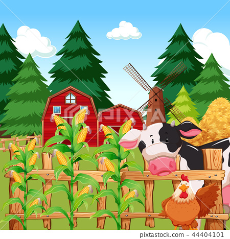 A corn farm with animals 44404101