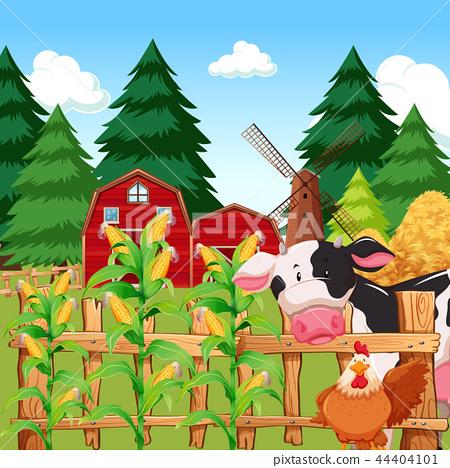 A corn farm with animals 44404101