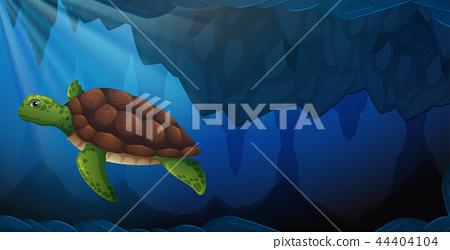 A green sea turtle underwater 44404104