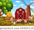 rural, barn, house 44404114