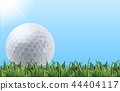Golf ball on grass 44404117