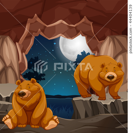 Two brown bears in cave 44404139