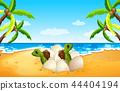 green beach island 44404194