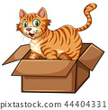 A cat in the box 44404331
