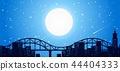 City sky line at night 44404333