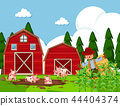 Farm scene with pigs in mud 44404374