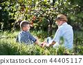 苹果 祖父 外祖父 44405117