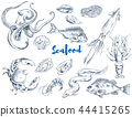 Exotic Seafood Monochrome Sketch Illustrations Set 44415265