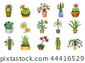 Set of Cute cactus and Succulents for cards. Stickers for girls. Mexican houseplants. kawaii cacti 44416529