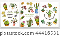 Set of cards cactus and cute template Succulents. Stickers for girls. Mexican houseplants posters 44416531