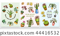 Set of cards cactus and cute template Succulents. Stickers for girls. Mexican houseplants posters 44416532