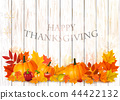 Happy Thanksgiving Background with fruit 44422132