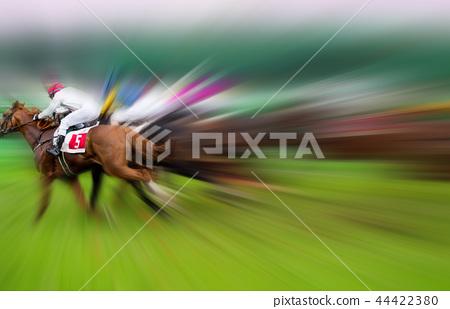 Race horses with jockeys on the home straight 44422380
