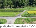 農村風景早期的秋天鄉下公路 44422555