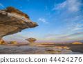埃及西部的白色沙漠 44424276