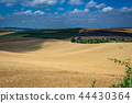 Moravian Tuscany Kyjov 44430364