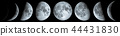 Phases of the Moon 44431830