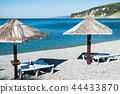 Beach umbrellas and sun beds on the ocean 44433870
