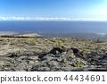 hawaii, ocean, sea 44434691