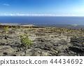 hawaii, ocean, sea 44434692