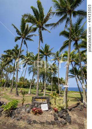 hawaii, nature, natural 44435003