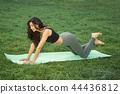 yoga,exercise,female 44436812