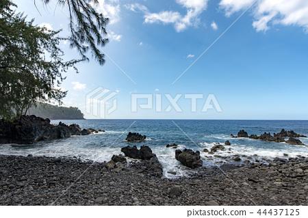 hawaii, resort, resorts 44437125