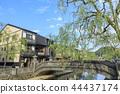 kinosakionsen, hot spring area, hot spring district 44437174