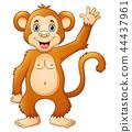 卡通 猴子 微笑 44437961