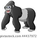 Vector illustration of Cartoon funny gorilla 44437972