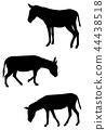 donkeys silhouettes set 44438518