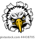 Eagle Mascot Face Ripping Through Background 44438705