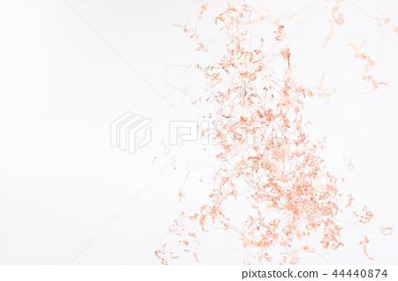 background/texture-乾燥花 44440874
