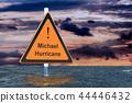 Hurricane Michael, flood concept. 3D rendering 44446432