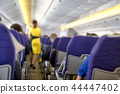 Blurred Flight serving passengers 44447402
