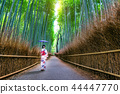 Bamboo Forest. 44447770