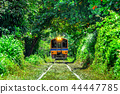 Train through a tunnel of trees in Thailand. 44447785